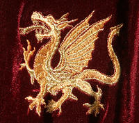 Gold embroidered dragon design