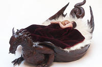 Left side view of Dragon Bed