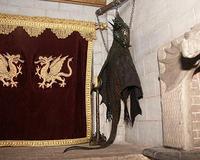 Hanging Dragon Skin Trophy