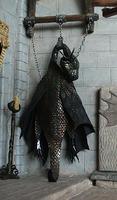 Hanging Dragon Skin  Supplies & Tools